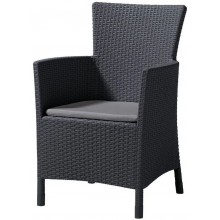 ALLIBERT IOWA zahradní židle, 62 x 60 x 89cm, grafit 17197853