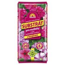FORESTINA Substrát pro muškáty a balkonové rostliny 20l