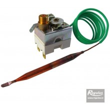 REGULUS 95H110R13/07456 Termostat havarijní 90-110°C, kapilára 1 m, zl.k. 11088