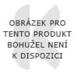 PROTHERM MiPro Remote zařízení dálkového ovládání, 0020231578